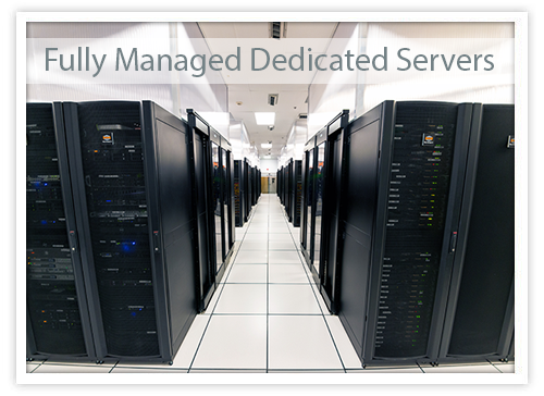 managed dedicated server options