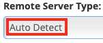 Leave the Remote Server Type Set to Auto Detect Unless There are Problems