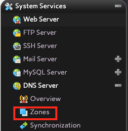 Click on Zones Under the DNS Server Section