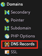 Click on DNS Records in the Domains Section