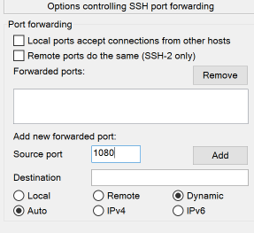 Set a Local Source Port Type to Dynamic