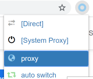 Select the Proxy to Use It