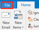 Click the File Menu Item